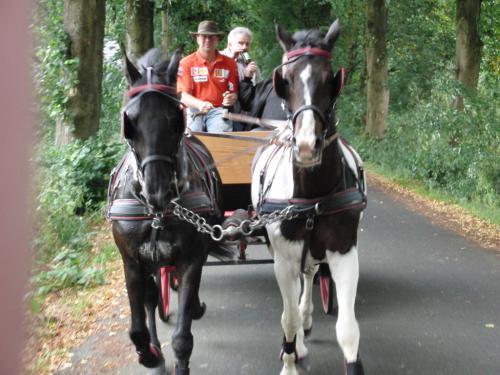 Kutschfahrt 2009