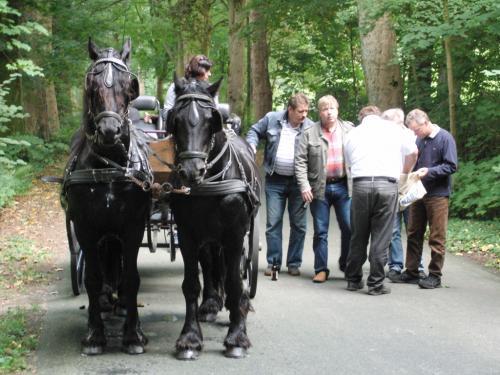 Kutschfahrt 2009 (19) (1)