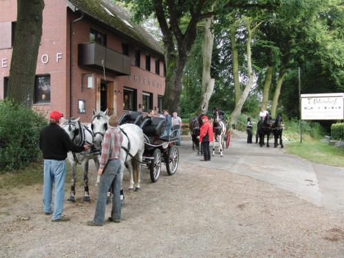 Kutschfahrt 2009 (32) (1)