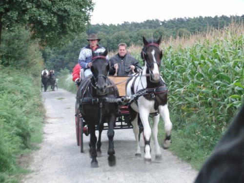 Kutschfahrt 2009 (38) (1)