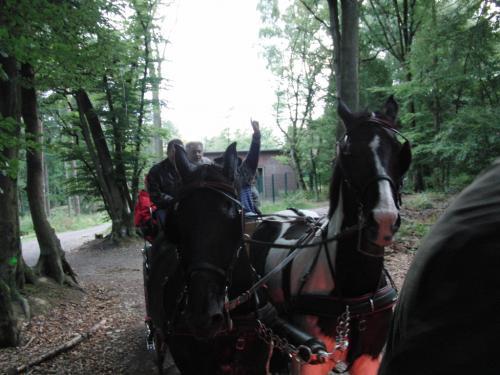 Kutschfahrt 2009 (42) (1)
